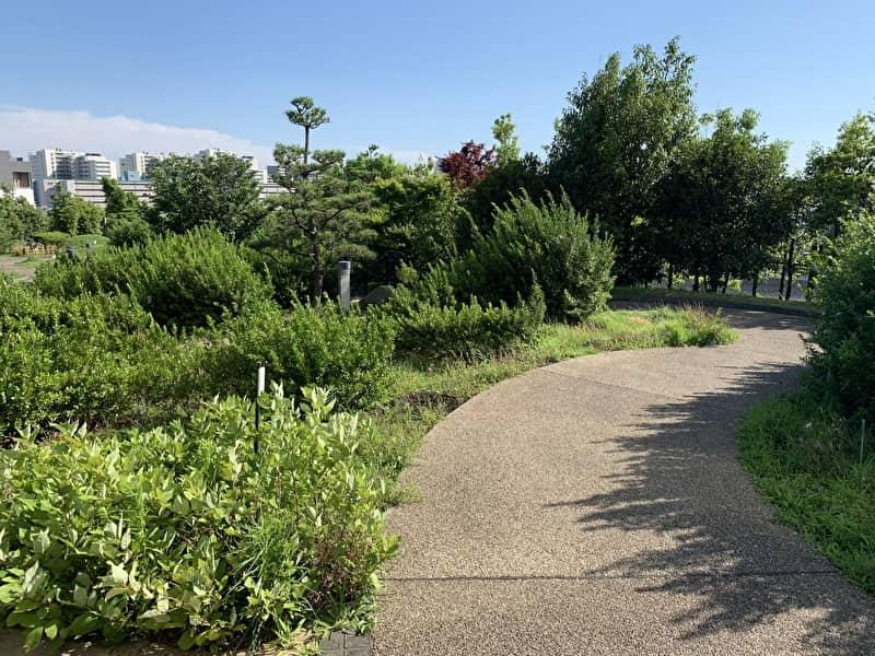 中目黒情報サイト 目黒天空庭園 緑道