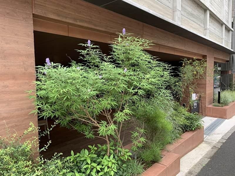 OPEN NAKAMEGURO カフェ 外観